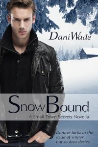 snow bound, dani wade, contemporary romance novella