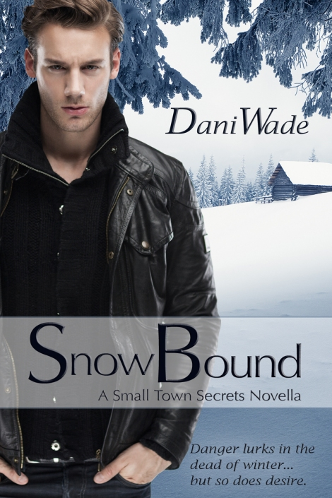 snow bound, dani wade, contemporary romance novella